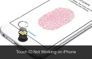 Touch-ID-Not-Working-on-iPhone1